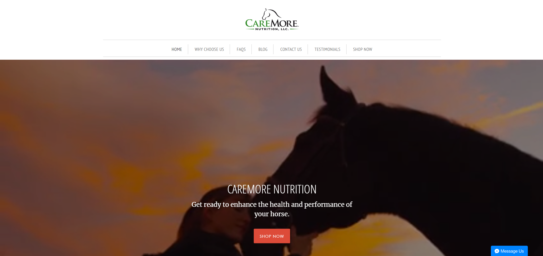 CAREMORE NUTRITION Home Page